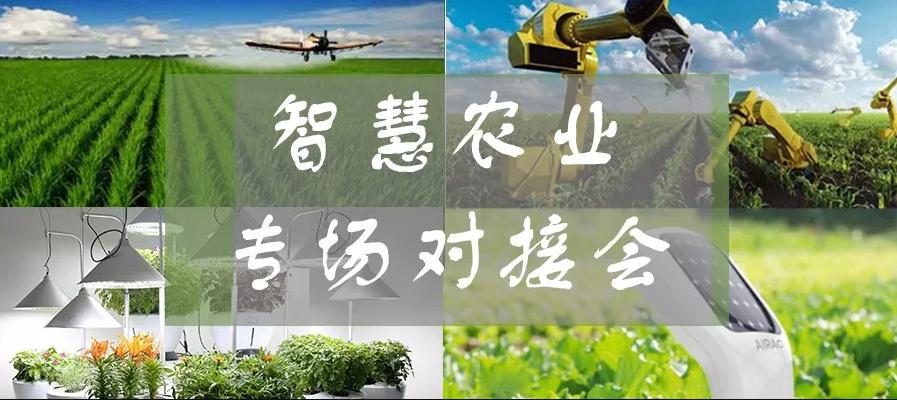 【招募】启迪之星再携企业进雄安,共探智慧农业